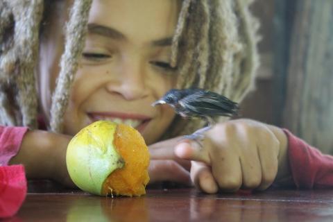 A little friend - Beenie Bird