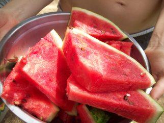 Ever-present watermelon