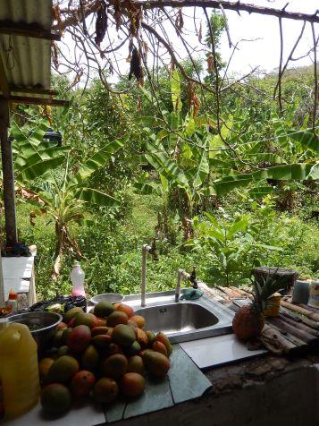 Fruit-covered kitchen sink