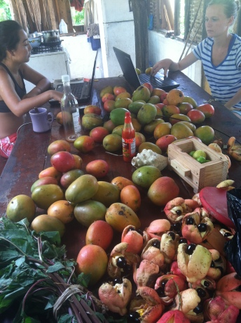 Lovely kitchen table with Kylie, Taylor, calaloo, part of a pollen trap, ackee, an empty honey bottle and loads of Julie mangoes.