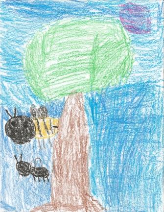 Enoch Adams, regular bee, black bee