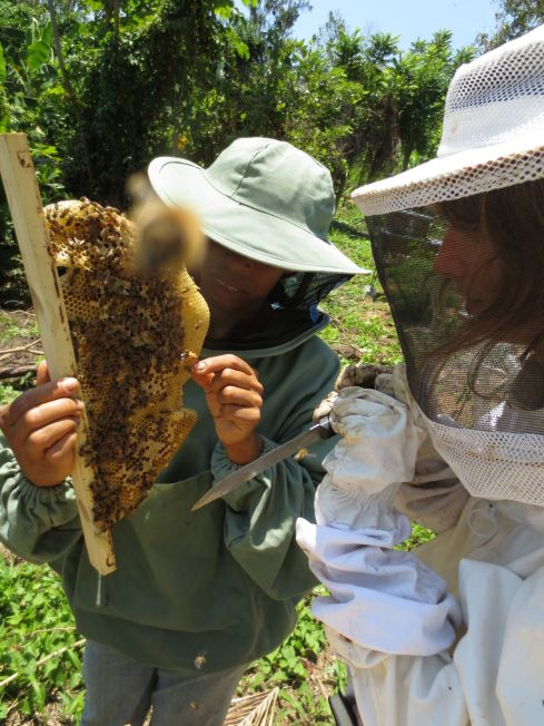 Being part of a community, working together, being supportive... We've gotten so much from living and working with the bees, and we love them!