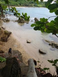 Our beach