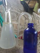 So many essential oildistillations!!