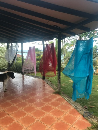 Goodbye - mosquito nets washed and cabins cleaned, yard empty...