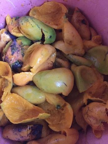 Mango Peel